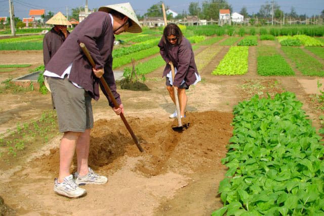 Hoi An travel - Tra Que village tour
