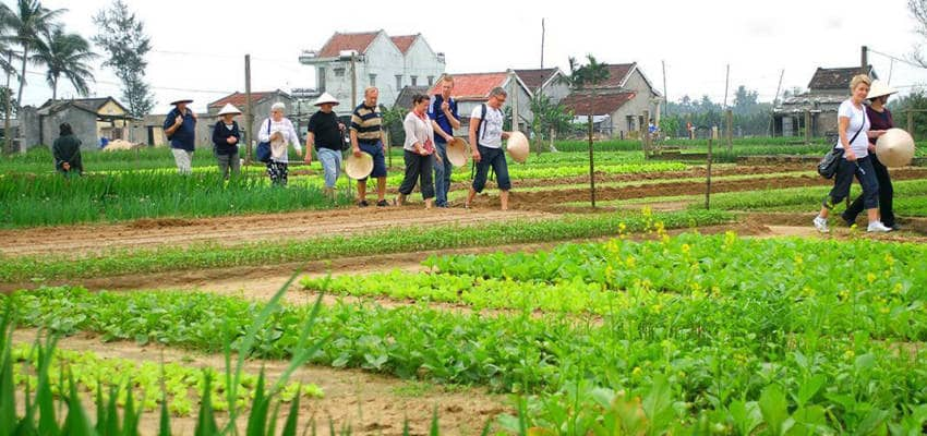 VEGETABLE VILLAGE TOUR - Things to do in hoi an city