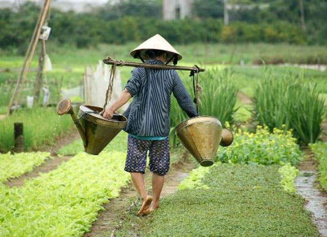 SOME EXPERIENCE WHEN TRAVELLING TO HOI AN 21